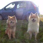 Ronja & Andor - ein entspanntes Paar