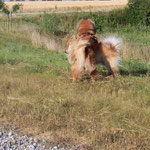 Ronja in Action :-)))