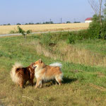 Ronja & Andor
