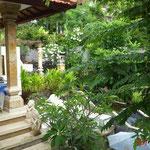 Blick von unserer Terrasse in den Garten