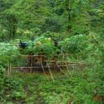 Balinesische Viehhaltung