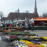 Der Wochenmarkt (immer Samstags)