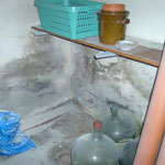 Schimmelpilze an den Wänden eines Kellers