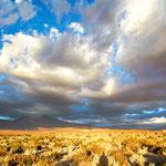 Atacama Wüste  - bei Ayquina II