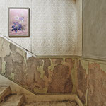Mystic Forest | Stairwell