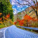 A Hiking Road to Mount Mitake, Okutama.