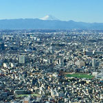 View of Mt. Fuji from Metropolitan Government Building in Shinjuku.