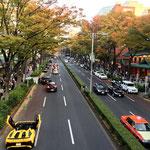 Omotesando Street.