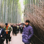 At a Bamboo Forest in Arashiyama, Kyoto.