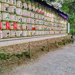 Sake barrels donated to Meiji Shrine.