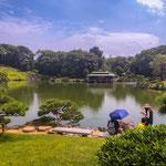 At Kiyosumi Japanese Gardens.