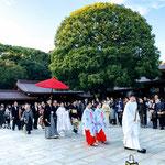 A wedding ceremony in Meiji Shrine.
