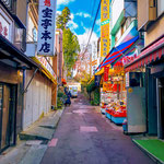 Traditional shopping street on the way to Mount Mitake.