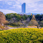 A View of Tokyo Dome from Koishikawa Japanese Gardens.