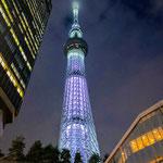 Tokyo Skytree at Night.