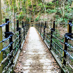 A Wooden Suspension Bridge at Mount Takao.