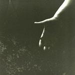 Foto:  VN Jaeger © My Lucky Star - Ela Stein-Weissberger, 47 x 47 cm,  2011