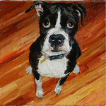 Lucy, 2010 Oil on canvas, 8 x 8 inches