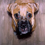 Marley (II), 1996 Oil on canvas, 40 x 40 inches