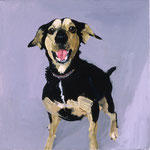 Black and Tan Puppy, 1999 Oil on canvas, 13 x 13 inches