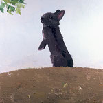 Bunny and Parsley, 2003 Oil on canvas, 28 x 24 inches