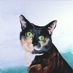 Andi's Cat, 1999 Oil on canvas, 26 x 26 inches
