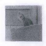 Terrorist (#2), 2000 Graphite on paper, 12 5/8 x 19 3/4 inches