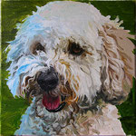 Duncan, 2013 Oil on canvas, 12 x 12 inches