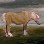 Horse, 2002 Oil on canvas, 16 x 20 inches