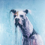 Petey, 1994 Oil on canvas, 26 x 26 inches