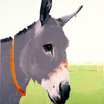 Donkey, 1999 Oil on canvas, 30 x 24 inches