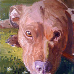 Toby, 2009 Oil on canvas, 30 x 23 inches