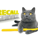 Recallkarte Zahnarzt Katze