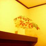 教室のいたるところに観葉植物があります。