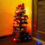 クリスマスには小さなクリスマスツリーを飾っています。
