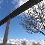 Sous le viaduc de Millau Le jardin des Explorateurs
