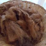 laine de lama