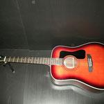 70年代 マウンテン W-350G カレッジギターズ