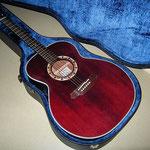 Takamine PT507(Spruce) 2003' カレッジギターズ
