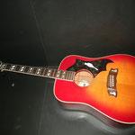 1970年代 Morris WD-25 ギブソンDOVEコピーモデル カレッジギターズ