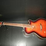 TAIKA TA-45 by S.yairi エレアコ カレッジギターズ