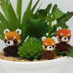 Familie Roter Panda - Eigene Abwandlung
