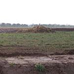 Landesgrenze: hier war der Bauer mit seinem Dünger wohl zu optimistisch - oder zu langsam...