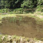 水を溜めた水田跡地
