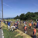 稲刈り体験イベント3