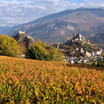 Vignoble / photo-genic.ch/Denis Emery