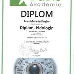 Diplom Iridologie - ausgezeichneter Erfolg - Danke Vistara Haiduk