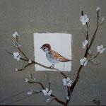 Oiseaux des jardins détail