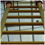 Goldene Leiter