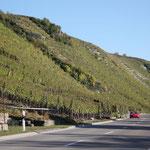 Impressionen von der Württemberger Weinstraße